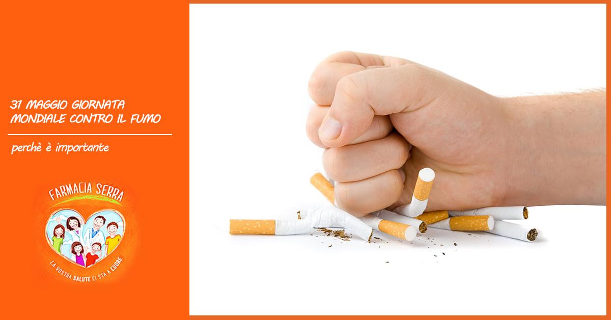 5_31-fumo