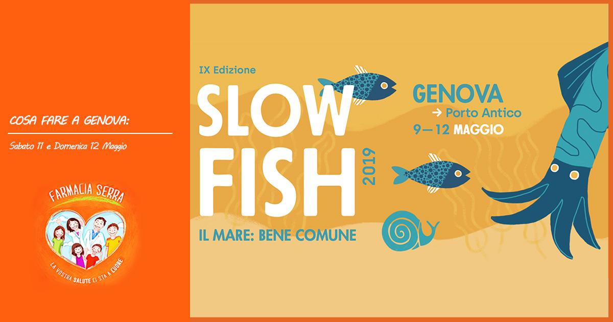 slow-fish-2