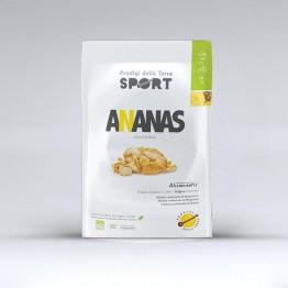 Ananas disidratato  Bio 25g