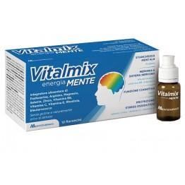 Vitalmix Mente 12fl