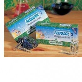 Fisiosol 10 I 20f 2ml