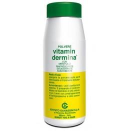 Vitamindermina Polv Ment 100g