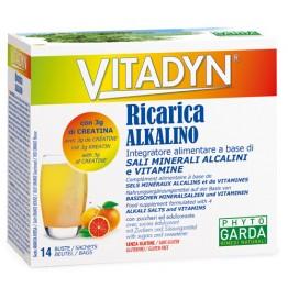 Vitadyn Ricarica 14bust 7g