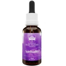 Spirituality  Ess 30ml Gtt