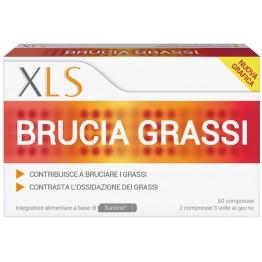Xls Brucia-Grassi 60cps