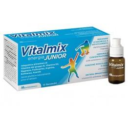 Vitalmix Junior 12fl