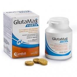 Glutamax Forte 40cpr