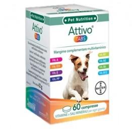 Attivo Tabs 60cpr